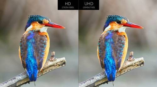 VIZIO M‑Series UHD vs HD